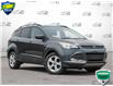 2016 Ford Escape SE (Stk: 1C026A) in Oakville - Image 1 of 26