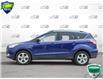 2016 Ford Escape SE (Stk: P5995) in Oakville - Image 3 of 25