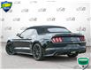 2016 Ford Mustang GT Premium (Stk: P6034) in Oakville - Image 4 of 27
