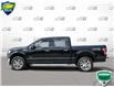 2017 Ford F-150 XLT (Stk: P6030X) in Oakville - Image 3 of 27