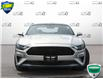 2019 Ford Mustang GT (Stk: P6047) in Oakville - Image 2 of 27