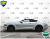 2019 Ford Mustang GT (Stk: P6047) in Oakville - Image 3 of 27