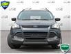 2016 Ford Escape SE (Stk: 1C026A) in Oakville - Image 2 of 26