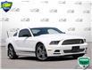2014 Ford Mustang V6 Premium (Stk: D1G033AX) in Oakville - Image 1 of 28