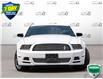 2014 Ford Mustang V6 Premium (Stk: D1G033AX) in Oakville - Image 2 of 28