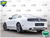 2014 Ford Mustang V6 Premium (Stk: D1G033AX) in Oakville - Image 4 of 28