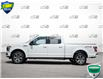 2019 Ford F-150 XLT (Stk: P6088) in Oakville - Image 3 of 26