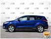 2013 Ford Escape SE (Stk: 0D028Z) in Oakville - Image 3 of 26