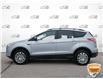 2013 Ford Escape SE (Stk: P6098XZ) in Oakville - Image 3 of 26