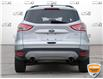 2013 Ford Escape SE (Stk: P6098XZ) in Oakville - Image 5 of 26