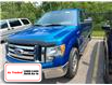 2011 Ford F-150 XLT (Stk: M2197A) in Welland - Image 1 of 5