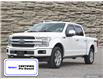 2019 Ford F-150 Platinum (Stk: M2176A) in Hamilton - Image 1 of 29