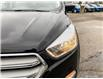 2019 Ford Escape SE (Stk: P7028A) in St. Thomas - Image 8 of 29