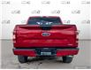 2020 Ford F-150 XLT (Stk: 1192A) in St. Thomas - Image 5 of 30