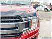 2020 Ford F-150 XLT (Stk: 1192A) in St. Thomas - Image 8 of 30
