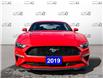2019 Ford Mustang EcoBoost (Stk: 1260A) in St. Thomas - Image 2 of 26