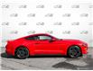 2019 Ford Mustang EcoBoost (Stk: 1260A) in St. Thomas - Image 3 of 26