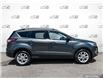 2017 Ford Escape SE (Stk: 7123A) in St. Thomas - Image 3 of 29