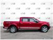 2019 Ford F-150 Platinum (Stk: 1162AX) in St. Thomas - Image 3 of 30