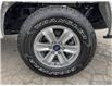 2019 Ford F-150 XLT (Stk: 1307B) in St. Thomas - Image 6 of 29