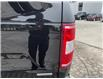 2019 Ford F-150 XLT (Stk: 1420A) in St. Thomas - Image 11 of 30