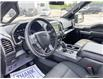 2019 Ford F-150 XLT (Stk: 1420A) in St. Thomas - Image 13 of 30