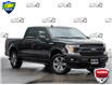 2020 Ford F-150 XLT (Stk: 4030) in Welland - Image 1 of 23