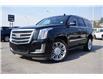 2016 Cadillac Escalade Platinum (Stk: 21-979A) in Kelowna - Image 1 of 18