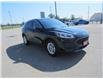 2020 Ford Escape SE (Stk: 21179A) in Perth - Image 3 of 11