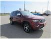 2019 Jeep Grand Cherokee Limited (Stk: 21110A) in Perth - Image 3 of 16
