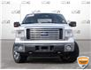 2010 Ford F-150 XLT Other