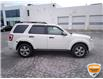 2009 Ford Escape XLT Automatic White