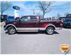 2008 Ford F-150 King Ranch (Stk: W0311BZ) in Barrie - Image 6 of 19