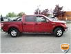 2013 Ford F-150 XLT (Stk: W0612AZ) in Barrie - Image 3 of 29