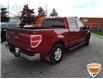 2013 Ford F-150 XLT (Stk: W0612AZ) in Barrie - Image 4 of 29
