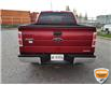 2013 Ford F-150 XLT (Stk: W0612AZ) in Barrie - Image 5 of 29