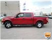 2013 Ford F-150 XLT (Stk: W0612AZ) in Barrie - Image 7 of 29