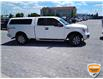 2012 Ford F-150 XLT (Stk: W0611AZ) in Barrie - Image 5 of 21