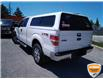 2012 Ford F-150 XLT (Stk: W0611AZ) in Barrie - Image 8 of 21