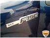 2010 Ford F-150 XLT Blue