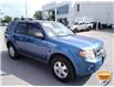 2010 Ford Escape XLT Automatic (Stk: W0667BXZ) in Barrie - Image 3 of 28