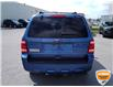 2010 Ford Escape XLT Automatic (Stk: W0667BXZ) in Barrie - Image 6 of 28