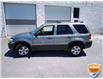 2005 Ford Escape XLT (Stk: W0591BXZ) in Barrie - Image 6 of 26