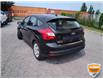 2014 Ford Focus SE (Stk: W0277DXZ) in Barrie - Image 5 of 17