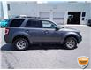 2010 Ford Escape XLT Automatic (Stk: 6979AXZ) in Barrie - Image 4 of 20