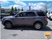2010 Ford Escape XLT Automatic (Stk: 6979AXZ) in Barrie - Image 9 of 20