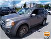 2010 Ford Escape XLT Automatic (Stk: 6979AXZ) in Barrie - Image 10 of 20