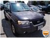 2006 Ford Escape XLT (Stk: W0546BZ) in Barrie - Image 4 of 21