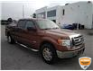 2011 Ford F-150 XLT (Stk: W0919AJZ) in Barrie - Image 5 of 23