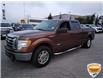 2011 Ford F-150 XLT (Stk: W0919AJZ) in Barrie - Image 13 of 23